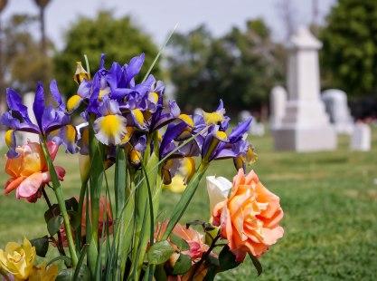 Cemetery-1020292